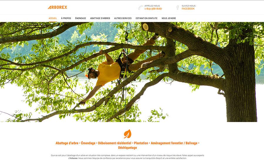 arborex abattage arbre déboisement émondage