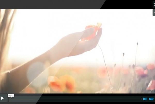 Vidéo hommage Rues Principales