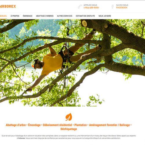 Arborex | Experts en abattage d'arbre, émondage et déboisement