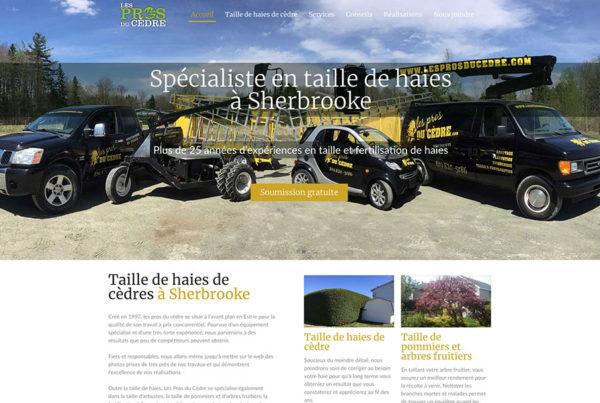 Taille de haies de cèdre à Sherbrooke – Les Pros du Cèdre